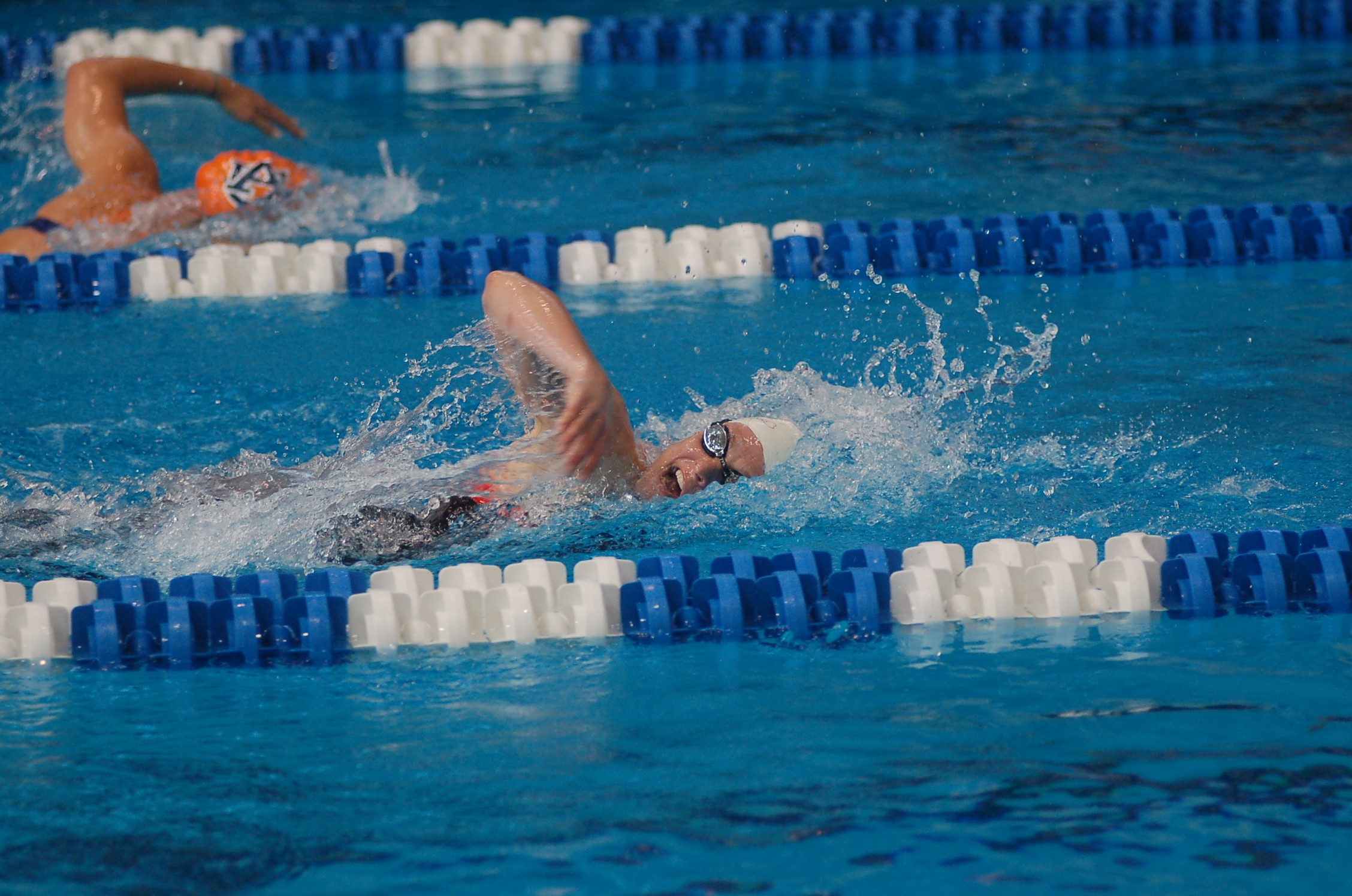 How to Swim Competitively forecast