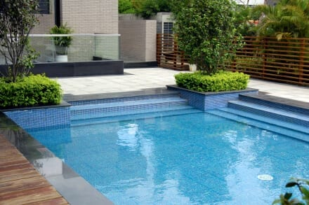 How to prevent and treat mustard algae in your pool