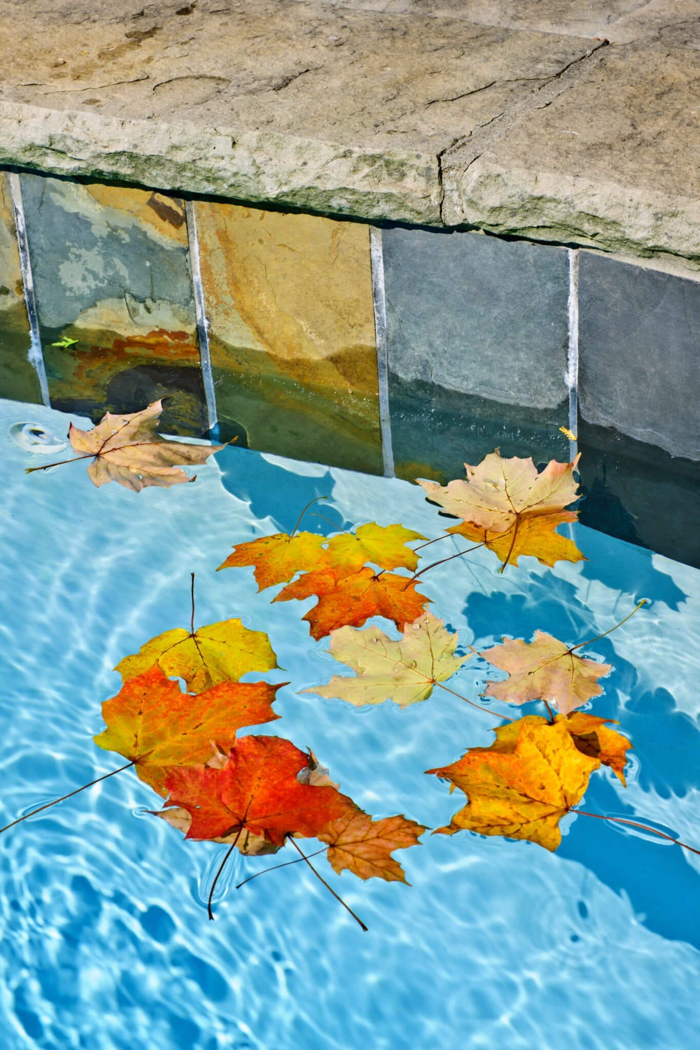 Winter Is Coming How To Close Your Pool Clear Comfort