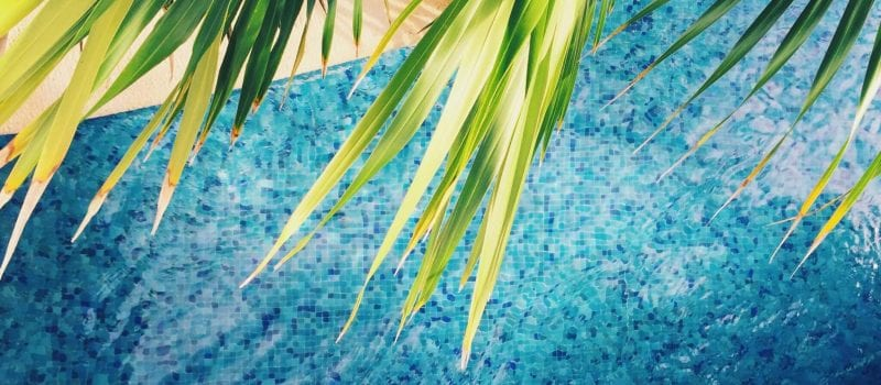 Pool Treatment: Does Green Clean? | Clear Comfort pool system